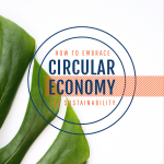 How to Embrace Circular Economy for Sustainability